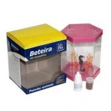 3347 - KIT BETEIRA SEXTAVADA 1LT MR PET