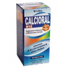621 - CALCIORAL B12 100 ML