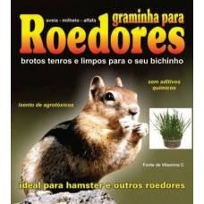 55036 - GRAMINHA ROEDORES