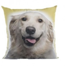 16597 - ALMOFADA GOLDEN RETRIEVER P (35X35)